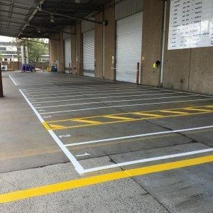 Designated car parking lines